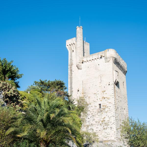 Torre Filipe, o belo