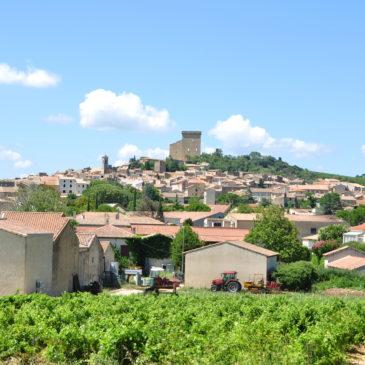 Rota do vinho na Provence: Châteauneuf du Pape