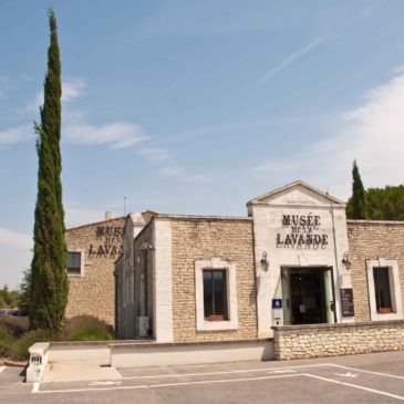 Museu da lavanda de Coustellet